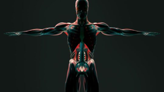 Technology in Pain Management   Integrated Pain Consultants, Scottsdale