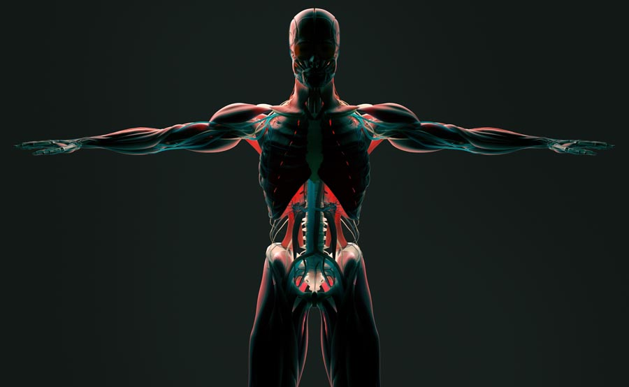 Technology in Pain Management | Integrated Pain Consultants, Scottsdale