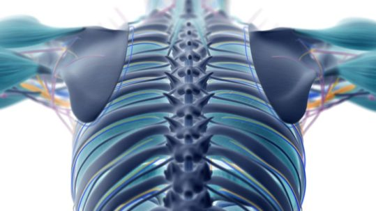 Back Pain and Spinal Compression Fractures | Integrated Pain Consultants