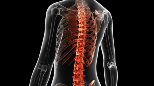 Reality of Degenerative Disc Disease | Integrated Pain Consultants, Mesa