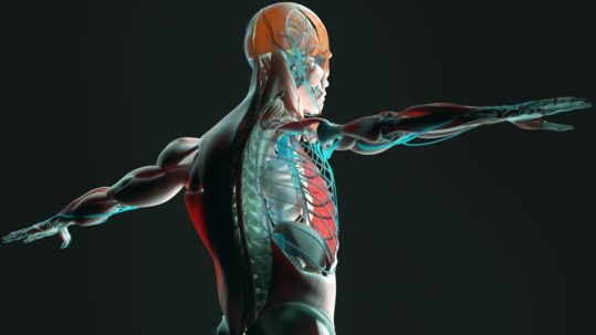 Pain Management for Cancer   Integrated Pain Consultants, Scottsdale