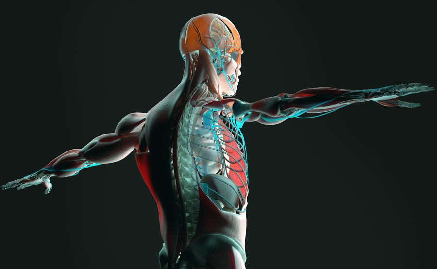 Pain Management for Cancer | Integrated Pain Consultants, Scottsdale
