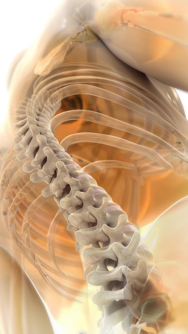 Chiropractic Care | Dr. Nikesh Seth, Scottsdale